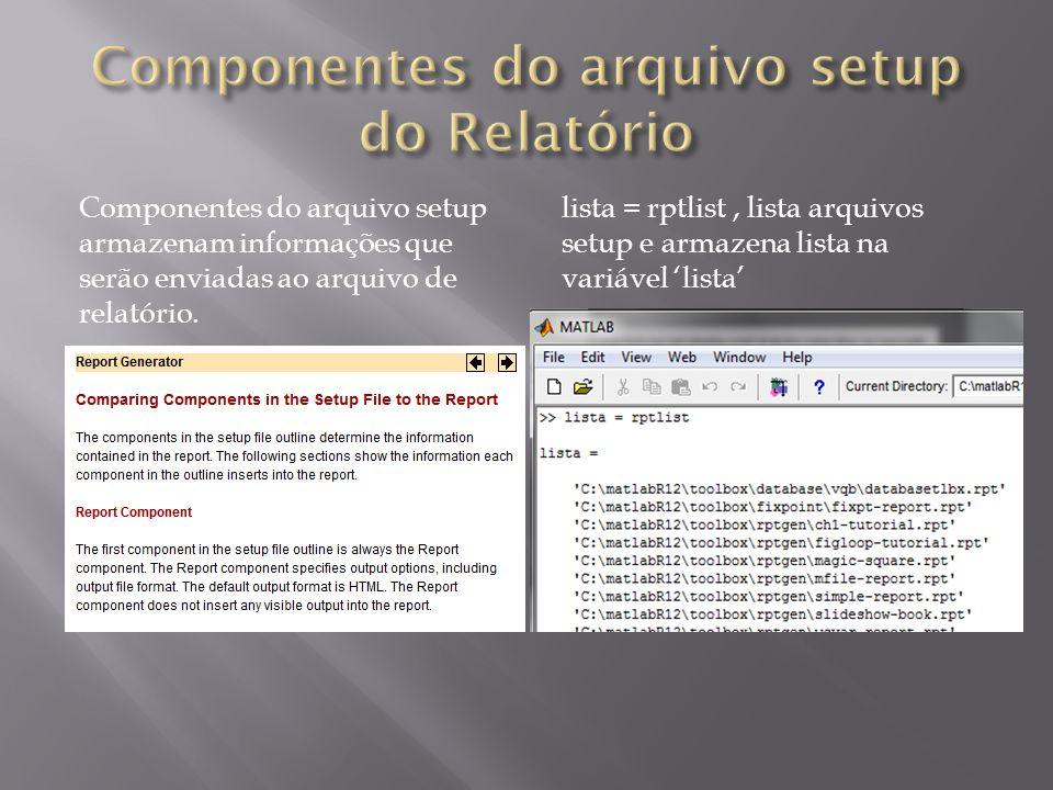Componentes do arquivo setup armazenam informações que serão enviadas ao arquivo de relatório. lista = rptlist, lista arquivos setup e armazena lista