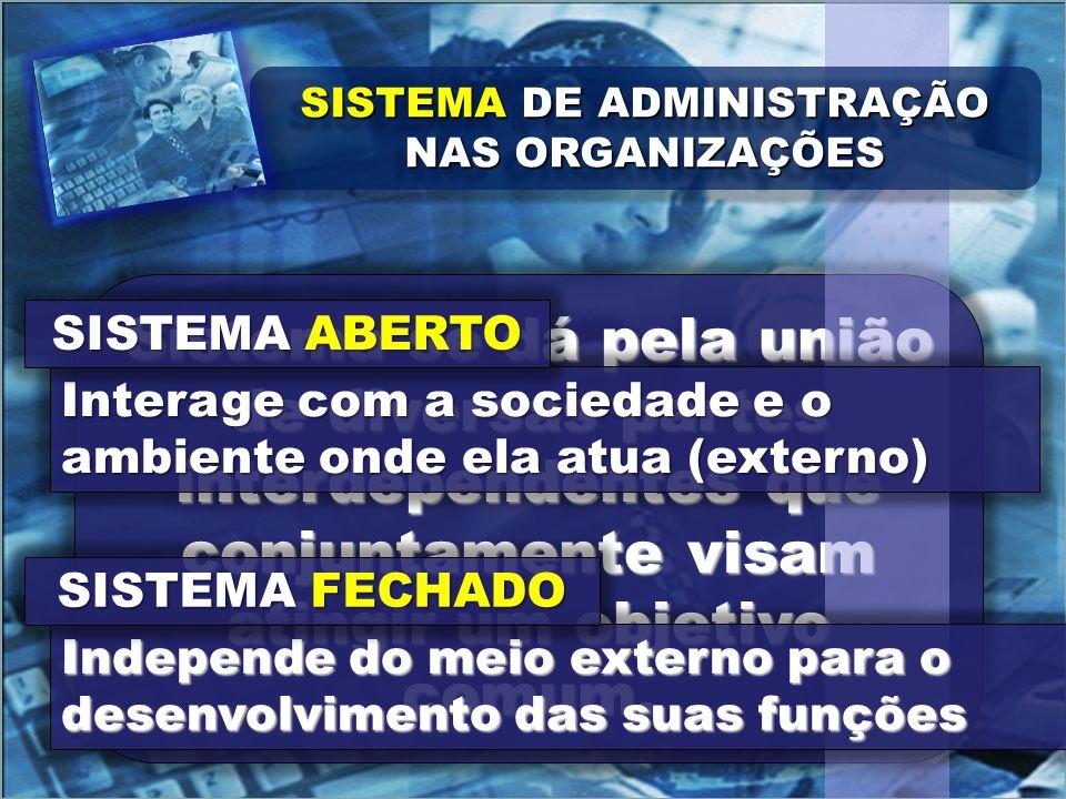 Sistema se dá pela união de diversas partes interdependentes que conjuntamente visam atingir um objetivo comum.