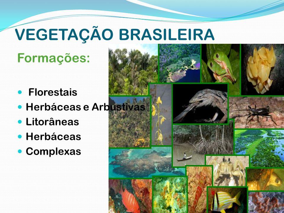 Formações Florestais Floresta Amazônica Mata Atlântica Mata de Araucária Mata dos Cocais
