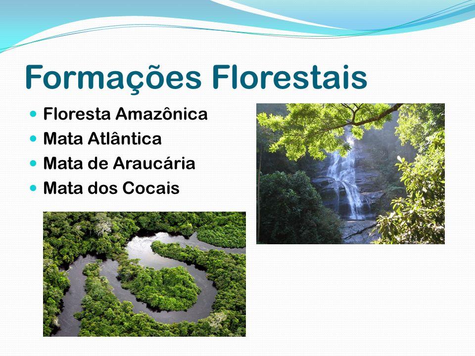 Formações herbáceas e arbustivas Caatinga Cerrado