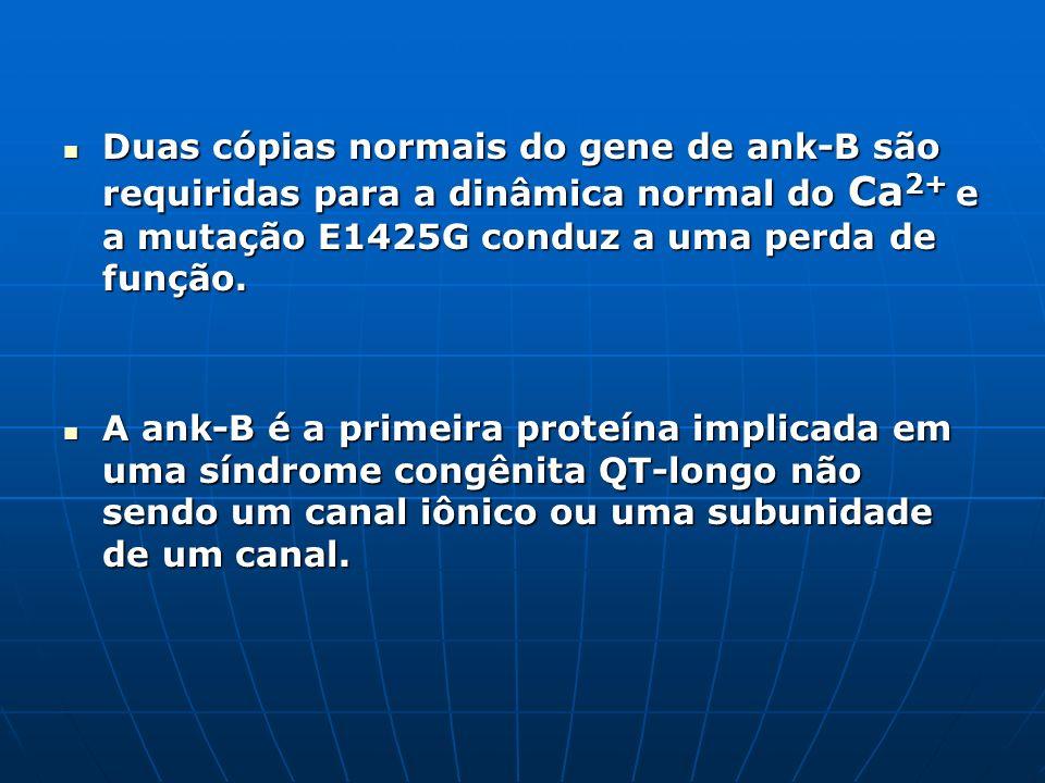 Duas cópias normais do gene de ank-B são requiridas para a dinâmica normal do Ca 2+ e a mutação E1425G conduz a uma perda de função. Duas cópias norma