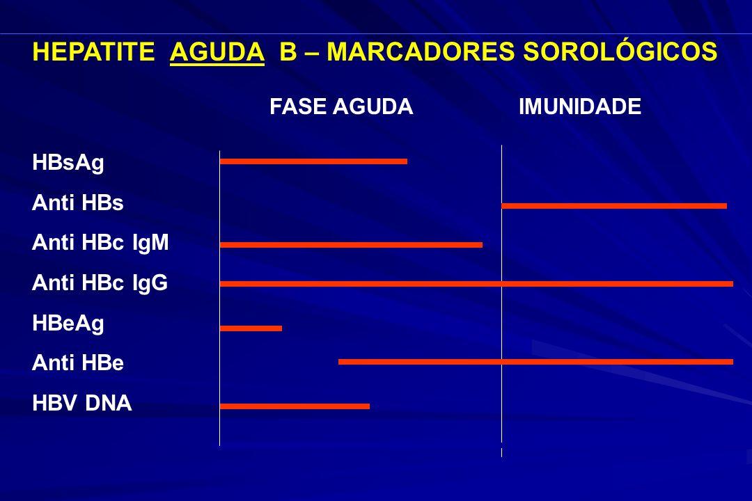 HEPATITE AGUDA B – MARCADORES SOROLÓGICOS HBsAg Anti HBs Anti HBc IgM Anti HBc IgG HBeAg Anti HBe HBV DNA FASE AGUDA IMUNIDADE 6 meses