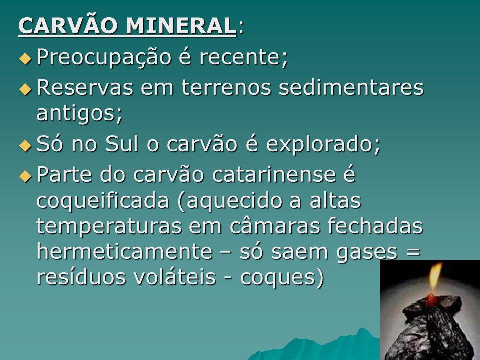 HIDRELETRICIDADE: Fonte renovável; Fonte renovável; Abundante no Brasil; Abundante no Brasil; 90% da potência instalada nas usinas são de geradores hidráulicos; 90% da potência instalada nas usinas são de geradores hidráulicos; 8% da energia são geradores térmicos; 8% da energia são geradores térmicos; Sul e Sudeste: Urubupungá (SP e MS), Jupiá e Ilha Solteira, Três Marias (Rio São Chico) e Itaipu (Rio Paraná – maior do mundo) Sul e Sudeste: Urubupungá (SP e MS), Jupiá e Ilha Solteira, Três Marias (Rio São Chico) e Itaipu (Rio Paraná – maior do mundo)