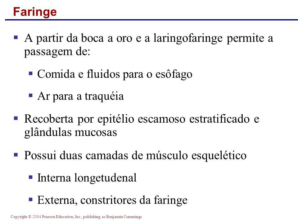 Copyright © 2004 Pearson Education, Inc., publishing as Benjamin Cummings Histologia do Intestino Delgado Figure 23.21