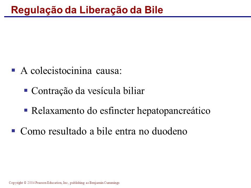 Copyright © 2004 Pearson Education, Inc., publishing as Benjamin Cummings Regulação da Liberação da Bile A colecistocinina causa: Contração da vesícul