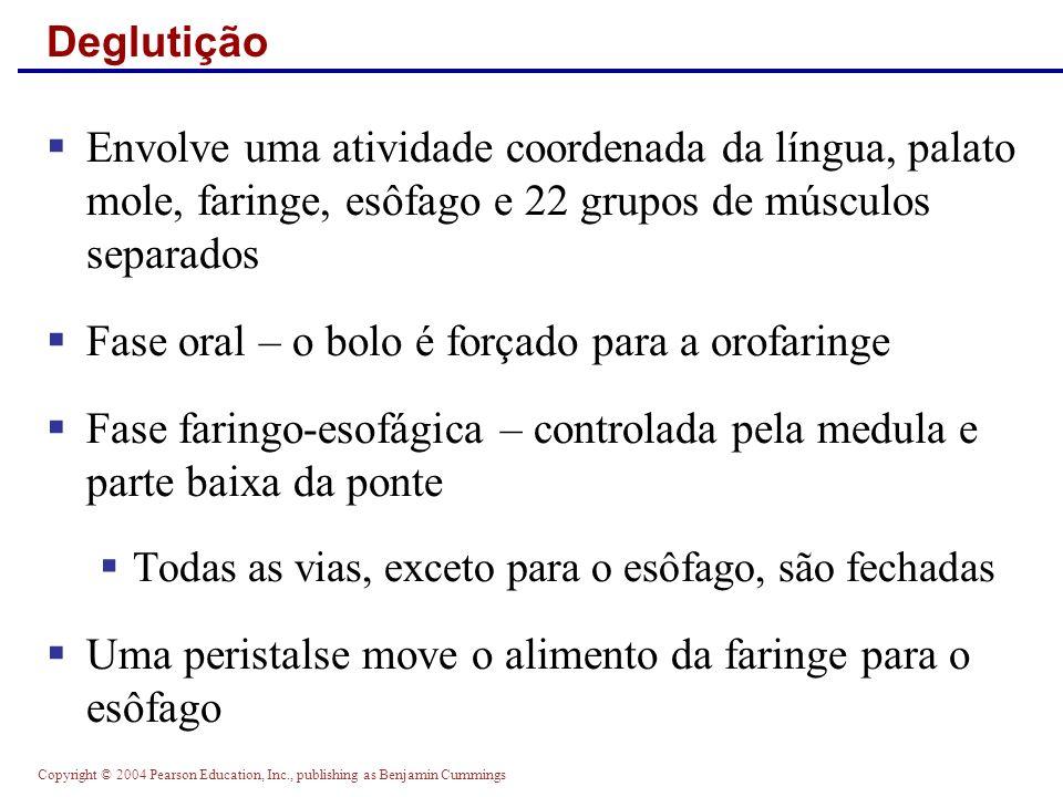 Copyright © 2004 Pearson Education, Inc., publishing as Benjamin Cummings Deglutição Envolve uma atividade coordenada da língua, palato mole, faringe,