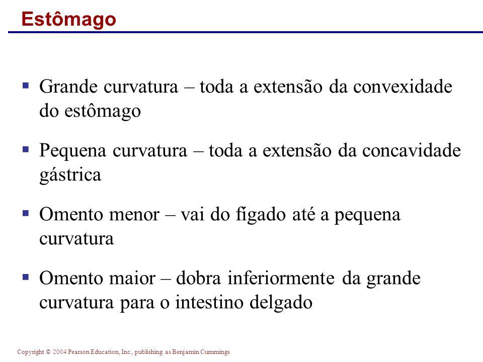 Copyright © 2004 Pearson Education, Inc., publishing as Benjamin Cummings Regulação do Esvaziamento Gástrico Figure 23.19