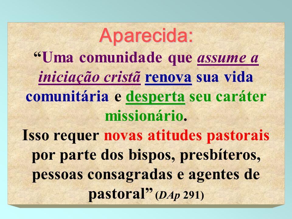 7 Aparecida: renova despertaUma comunidade que assume a iniciação cristã renova sua vida comunitária e desperta seu caráter missionário. Isso requer n