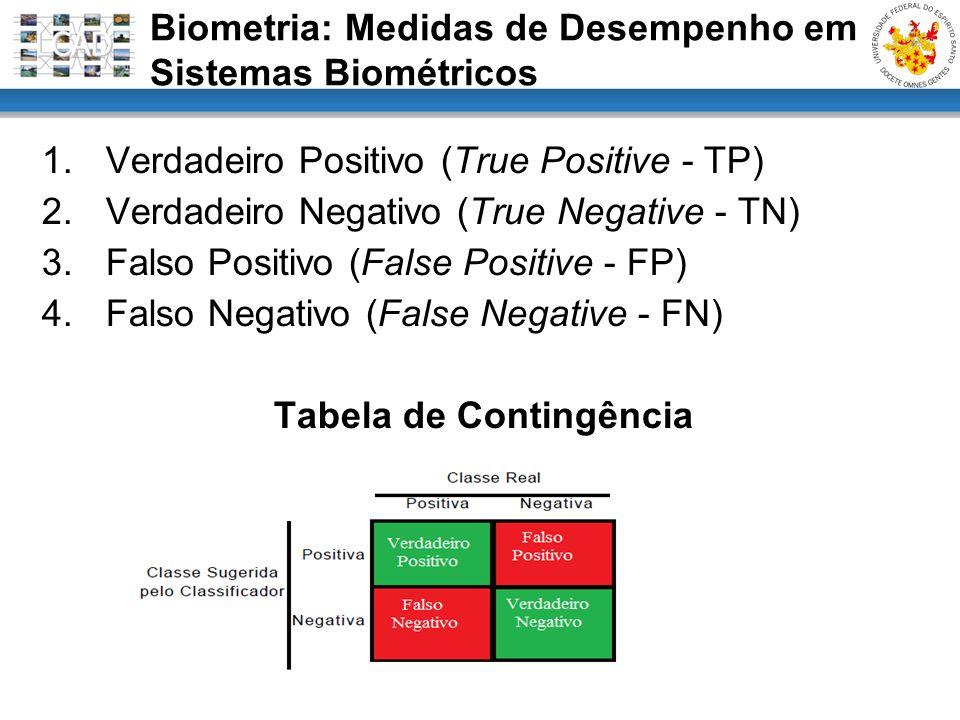 1.Verdadeiro Positivo (True Positive - TP) 2.Verdadeiro Negativo (True Negative - TN) 3.Falso Positivo (False Positive - FP) 4.Falso Negativo (False N