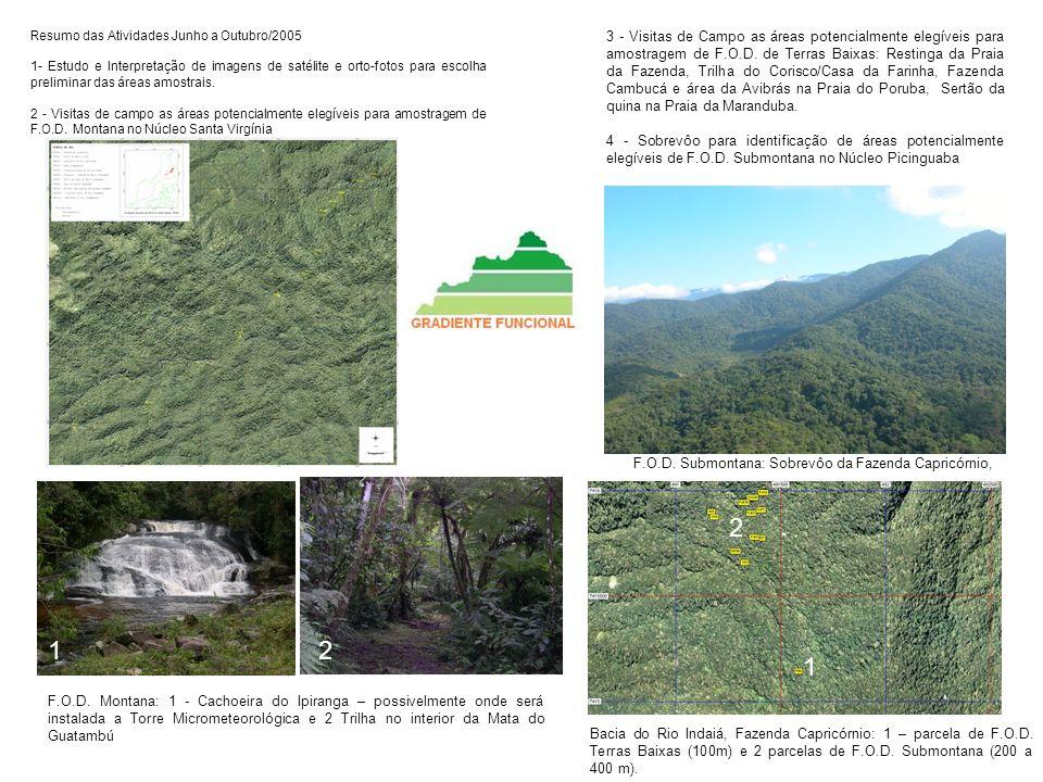 Resumo das Atividades Junho a Outubro/2005 1- Estudo e Interpretação de imagens de satélite e orto-fotos para escolha preliminar das áreas amostrais.
