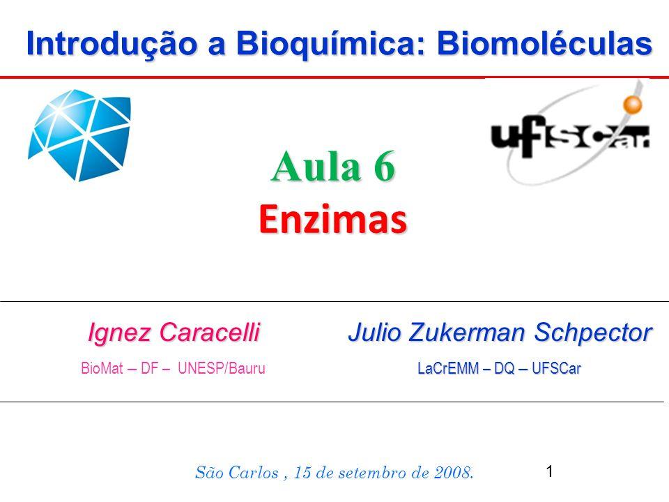 Ignez Caracelli BioMat – DF – UNESP/Bauru São Carlos, 15 de setembro de 2008. Aula 6 Enzimas Introdução a Bioquímica: Biomoléculas Julio Zukerman Schp