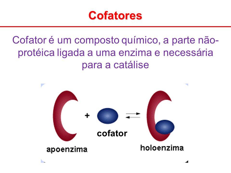 Cofatores cofator Cofator é um composto químico, a parte não- protéica ligada a uma enzima e necessária para a catálise