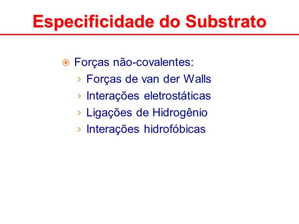 Forças não-covalentes: Forças de van der Walls Interações eletrostáticas Ligações de Hidrogênio Interações hidrofóbicas