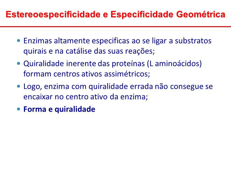Estereoespecificidade e Especificidade Geométrica Enzimas altamente especificas ao se ligar a substratos quirais e na catálise das suas reações; Quira