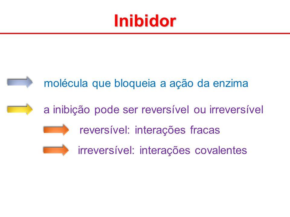 molécula que bloqueia a ação da enzima a inibição pode ser reversível ou irreversível reversível: interações fracas irreversível: interações covalente