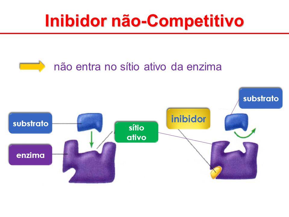 não entra no sítio ativo da enzima substrato enzima sítio ativo substrato inibidor