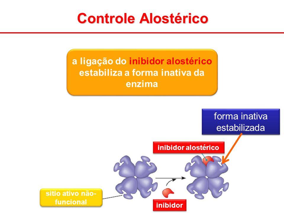 Controle Alostérico inibidor alostérico inibidor sitio ativo não- funcional a ligação do inibidor alostérico estabiliza a forma inativa da enzima form