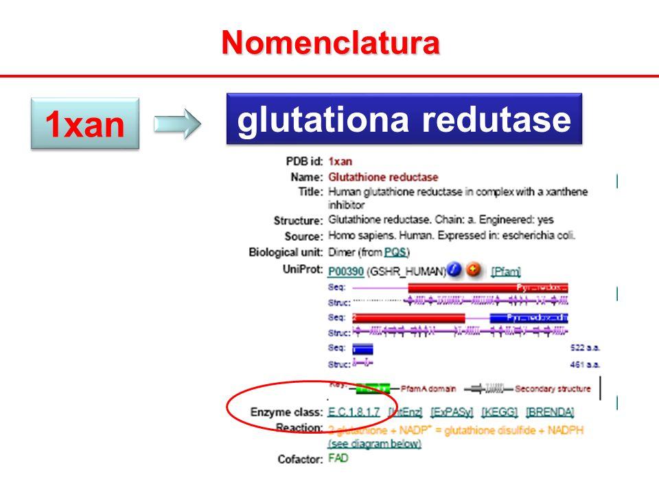 Nomenclatura 1xan glutationa redutase