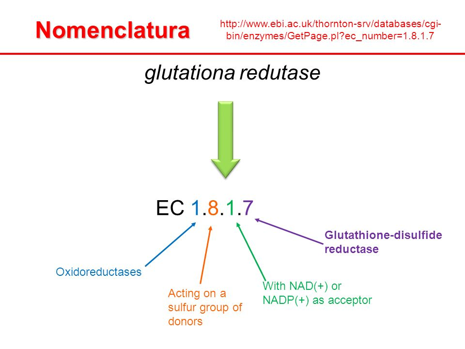 glutationa redutase EC 1.8.1.7 Oxidoreductases Acting on a sulfur group of donors With NAD(+) or NADP(+) as acceptor Glutathione-disulfide reductaseNo
