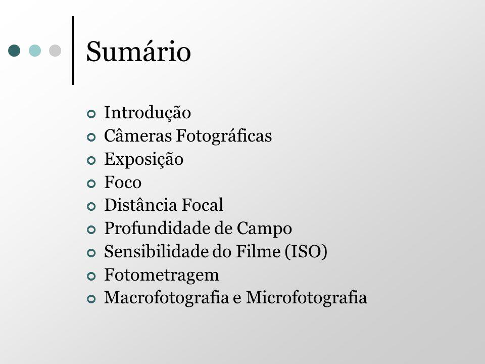 Sumário Introdução Câmeras Fotográficas Exposição Foco Distância Focal Profundidade de Campo Sensibilidade do Filme (ISO) Fotometragem Macrofotografia