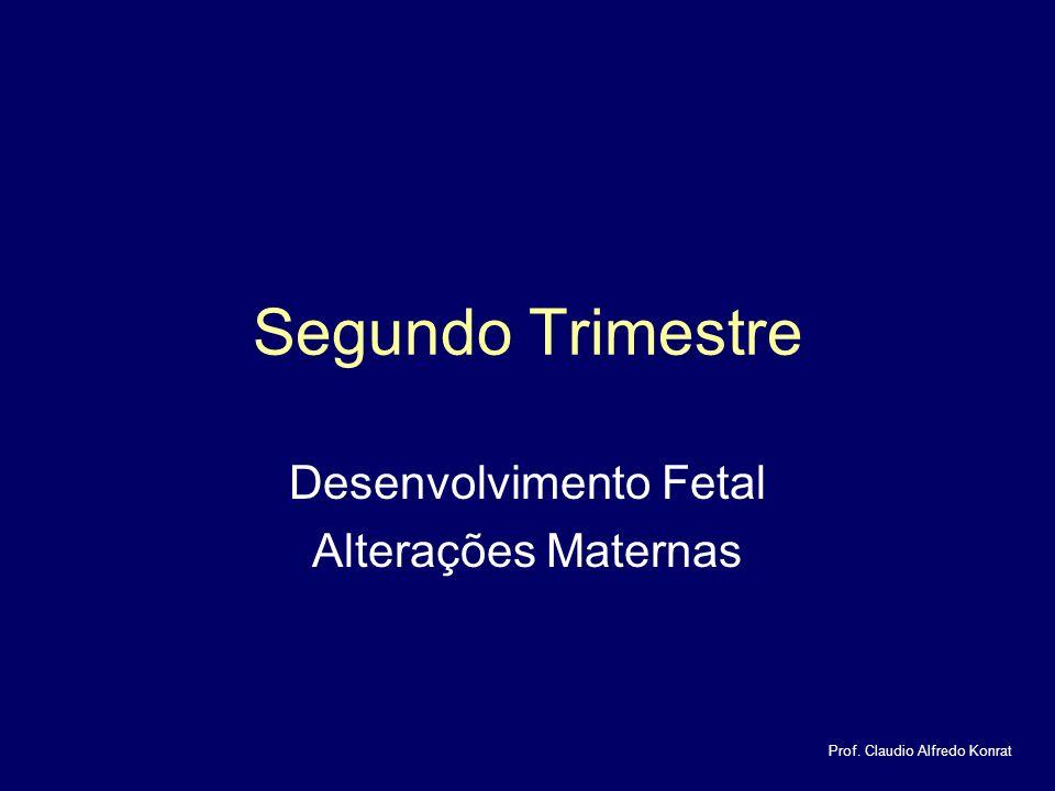 Segundo Trimestre Desenvolvimento Fetal Alterações Maternas Prof. Claudio Alfredo Konrat