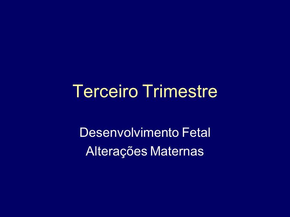 Terceiro Trimestre Desenvolvimento Fetal Alterações Maternas