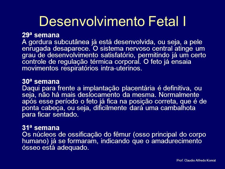 Desenvolvimento Fetal I 29ª semana A gordura subcutânea já está desenvolvida, ou seja, a pele enrugada desaparece.