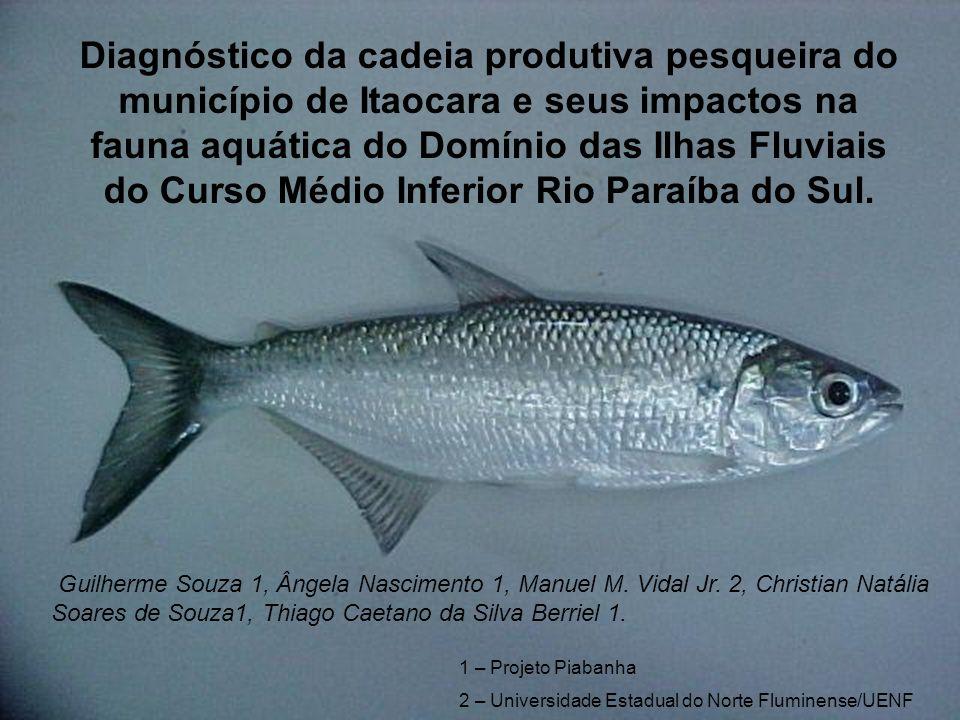 Diagnóstico da cadeia produtiva pesqueira do município de Itaocara e seus impactos na fauna aquática do Domínio das Ilhas Fluviais do Curso Médio Infe