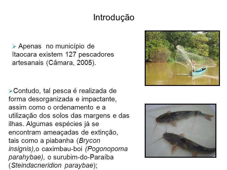Introdução Apenas no município de Itaocara existem 127 pescadores artesanais (Câmara, 2005). Contudo, tal pesca é realizada de forma desorganizada e i