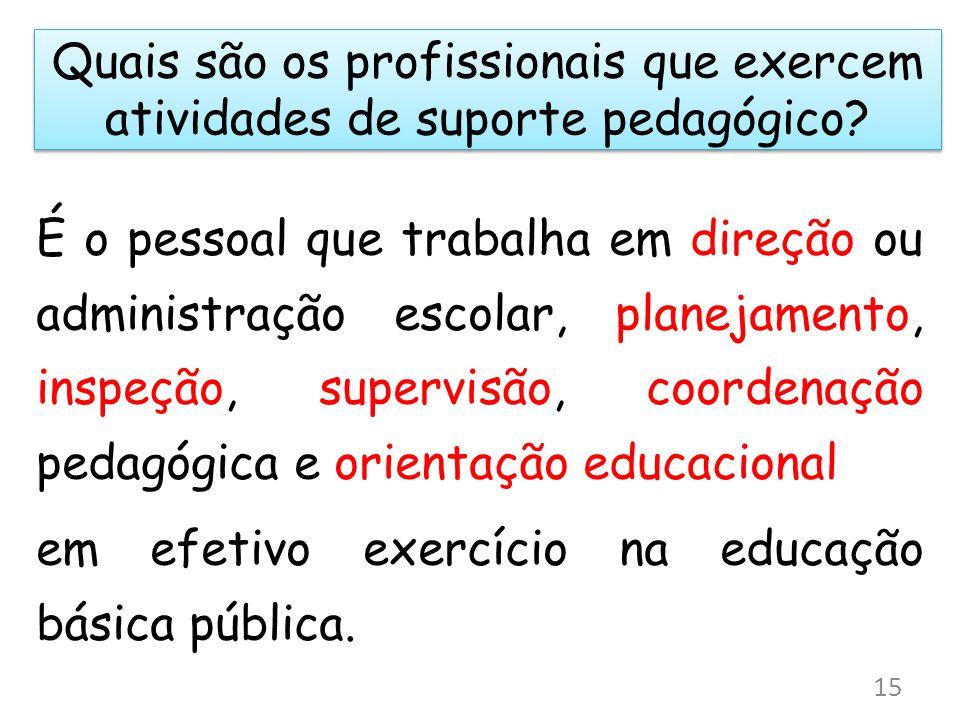 Quais são os profissionais que exercem atividades de suporte pedagógico? É o pessoal que trabalha em direção ou administração escolar, planejamento, i