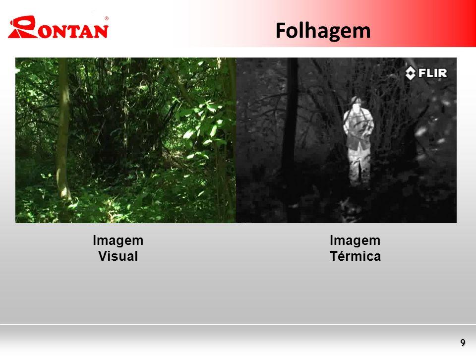 9 Folhagem Imagem Visual Imagem Térmica