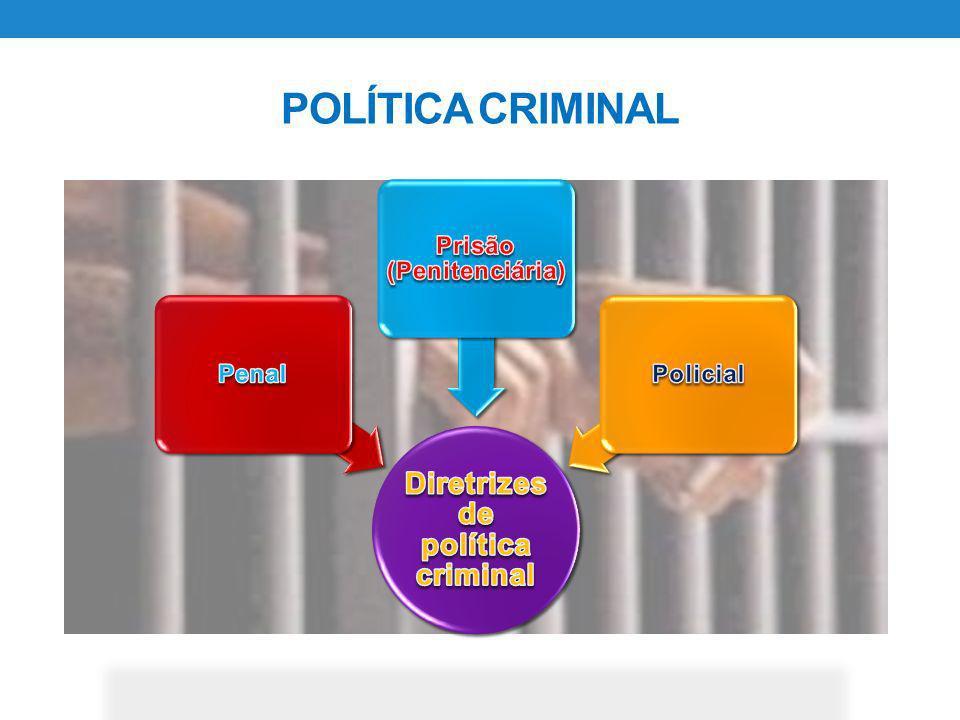 POPULAÇÃO CARCERÁRIA POR FAIXA ETÁRIA IDADE 18- 2526-3536-4546-55 56 em diante 22.26235.53519.8879.2494.398 24%39%22%10%5% Composição das perssoas privadas de libertade por todos os delitos entre 2007 e 2013, distribuída por idade.