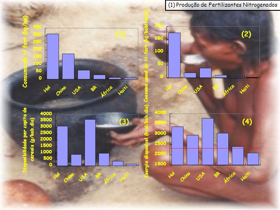 (1) (2) (3) (4) (1) Produção de Fertilizantes Nitrogenados 0 50 100 150 200 250 300 350 Hol China USA BR África Haiti 0 50 100 150 200 Hol China USA B