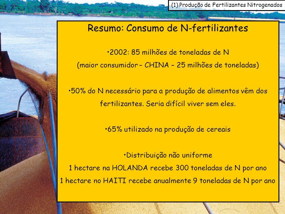 Resumo: Consumo de N-fertilizantes 2002: 85 milhões de toneladas de N (maior consumidor – CHINA – 25 milhões de toneladas) 50% do N necessário para a