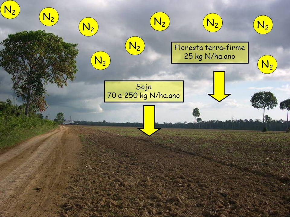Floresta terra-firme 25 kg N/ha.ano Soja 70 a 250 kg N/ha.ano N2N2 N2N2 N2N2 N2N2 N2N2 N2N2 N2N2 N2N2 N2N2