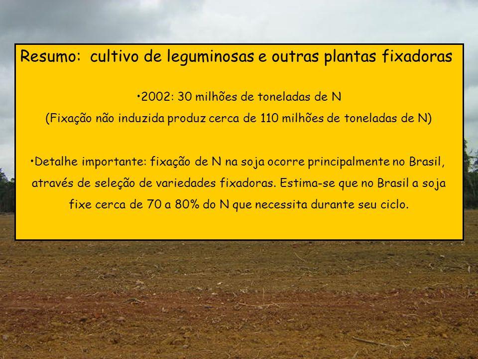 Resumo: cultivo de leguminosas e outras plantas fixadoras 2002: 30 milhões de toneladas de N (Fixação não induzida produz cerca de 110 milhões de tone