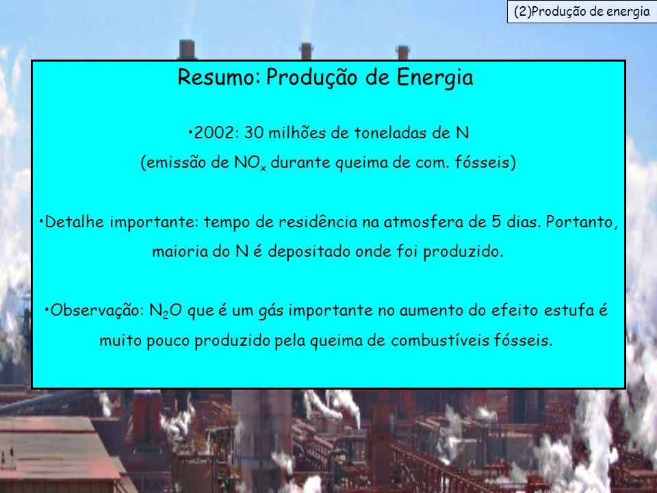 Resumo: Produção de Energia 2002: 30 milhões de toneladas de N (emissão de NO x durante queima de com. fósseis) Detalhe importante: tempo de residênci