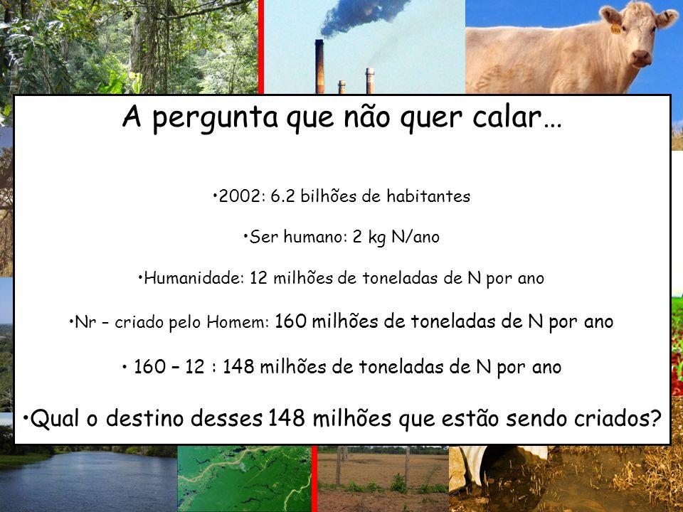 (1) Produção de Fertilizantes Nitrogenados A pergunta que não quer calar… 2002: 6.2 bilhões de habitantes Ser humano: 2 kg N/ano Humanidade: 12 milhõe