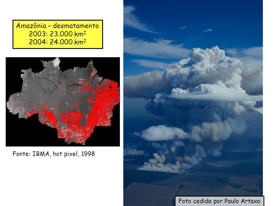 Amazônia – desmatamento 2003: 23.000 km 2 2004: 24.000 km 2 Fonte: IBMA, hot pixel, 1998 Foto cedida por Paulo Artaxo