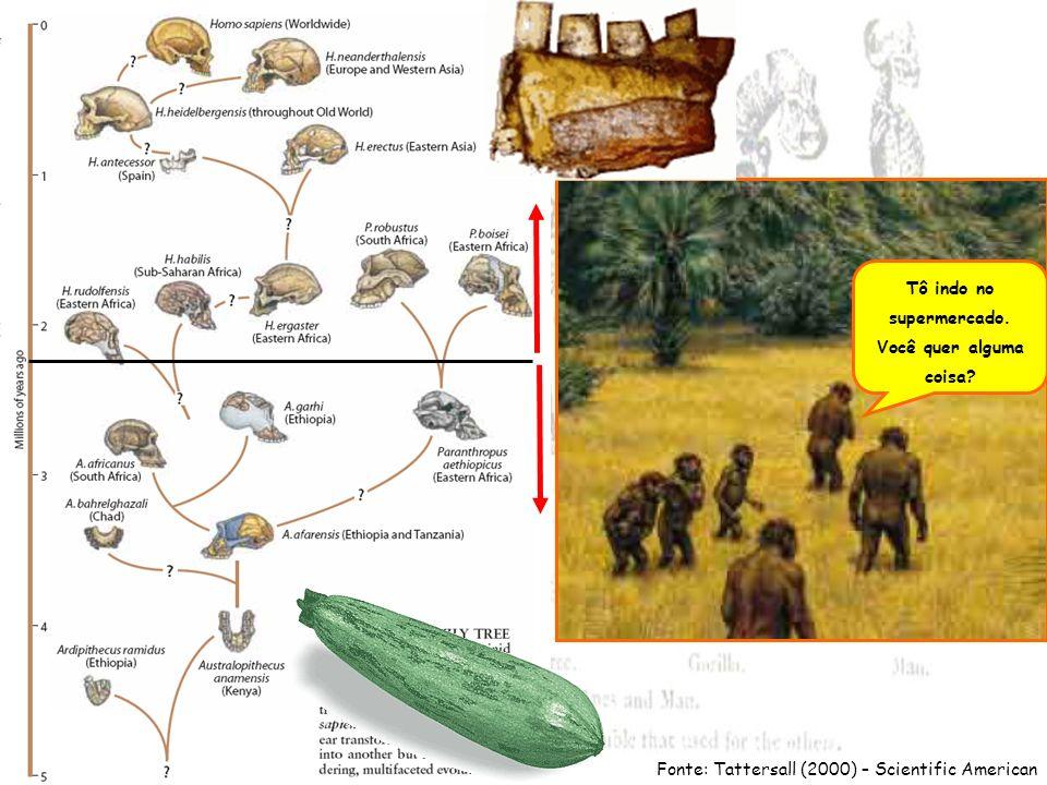 Fonte: museum.agropolis.fr/english/pages/expos/fresque/carte_agriculture.htm Milhi 3.500 a.C.