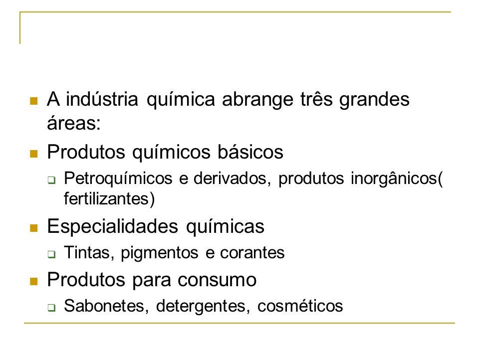 A indústria química abrange três grandes áreas: Produtos químicos básicos Petroquímicos e derivados, produtos inorgânicos( fertilizantes) Especialidad