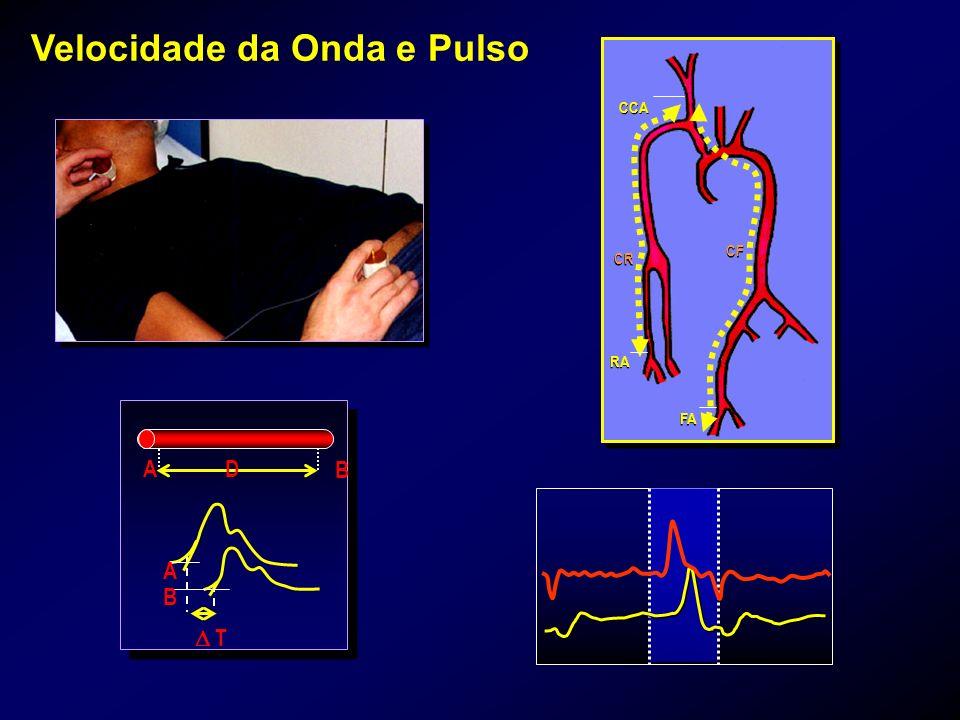 Velocidade da Onda e Pulso CCA CR CF RA FA A D B A B T
