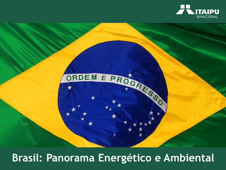 FonteS: EPE – PNE 2030; ELETROBRAS Rio Madeira – 6.450 MW UHE Santo Antonio – 3.150 MW UHE Jirau – 3.300 MW Complexo Tapajós – 10.682 MW AHE São Luiz do Tapajós - 6.133 MW AHE Cachoeira do Caí – 802 MW AHE Jatobá – 2.338 MW AHE Jamanxim – 881 MW AHE Cachoeira dos Patos – 528 MW Rio Xingu – 11.233 MW AHE Belo Monte – 11.233 MW 28.365 MW Uma opção: Turbina de Fluxo (BULBO) menor alagamento BRASIL - GERAÇÃO DE ENERGIA ELÉTRICA POTENCIAIS NOVAS GRANDES HIDRELÉTRICAS REGIÃO NORTE Bacia do Amazonas.potencial avaliado de 77.058 MW.distribuído em 13 sub-bacias 90% do potencial em quatro sub-bacias TAPAJÓS – XINGU – MADEIRA - TROMBETAS