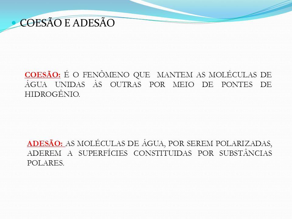 COESÃO E ADESÃO COESÃO: É O FENÔMENO QUE MANTEM AS MOLÉCULAS DE ÁGUA UNIDAS ÀS OUTRAS POR MEIO DE PONTES DE HIDROGÊNIO. ADESÃO: AS MOLÉCULAS DE ÁGUA,
