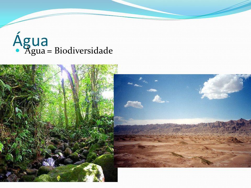 Água A quantidade de água varia de acordo com: taxa metabólica; Tipo de tecido; Idade; Espécie;