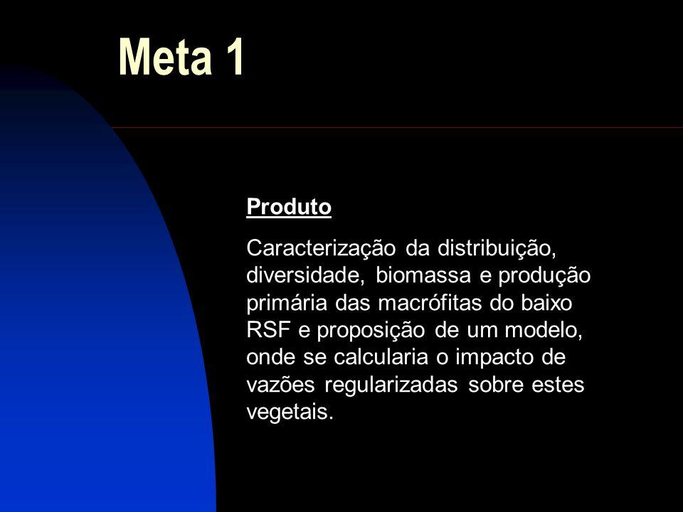 Meta 1 Produto Caracterização da distribuição, diversidade, biomassa e produção primária das macrófitas do baixo RSF e proposição de um modelo, onde s