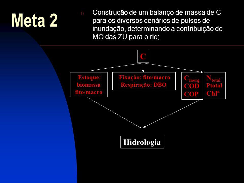 Meta 2 1) Construção de um balanço de massa de C para os diversos cenários de pulsos de inundação, determinando a contribuição de MO das ZU para o rio