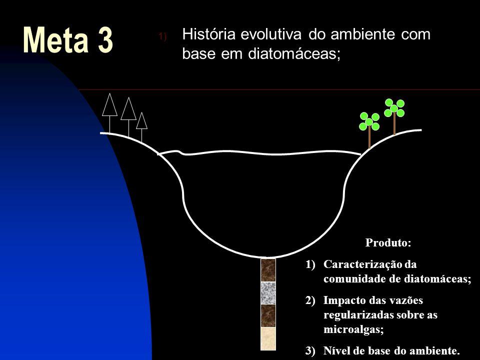 Meta 3 1) História evolutiva do ambiente com base em diatomáceas; Produto: 1)Caracterização da comunidade de diatomáceas; 2)Impacto das vazões regular