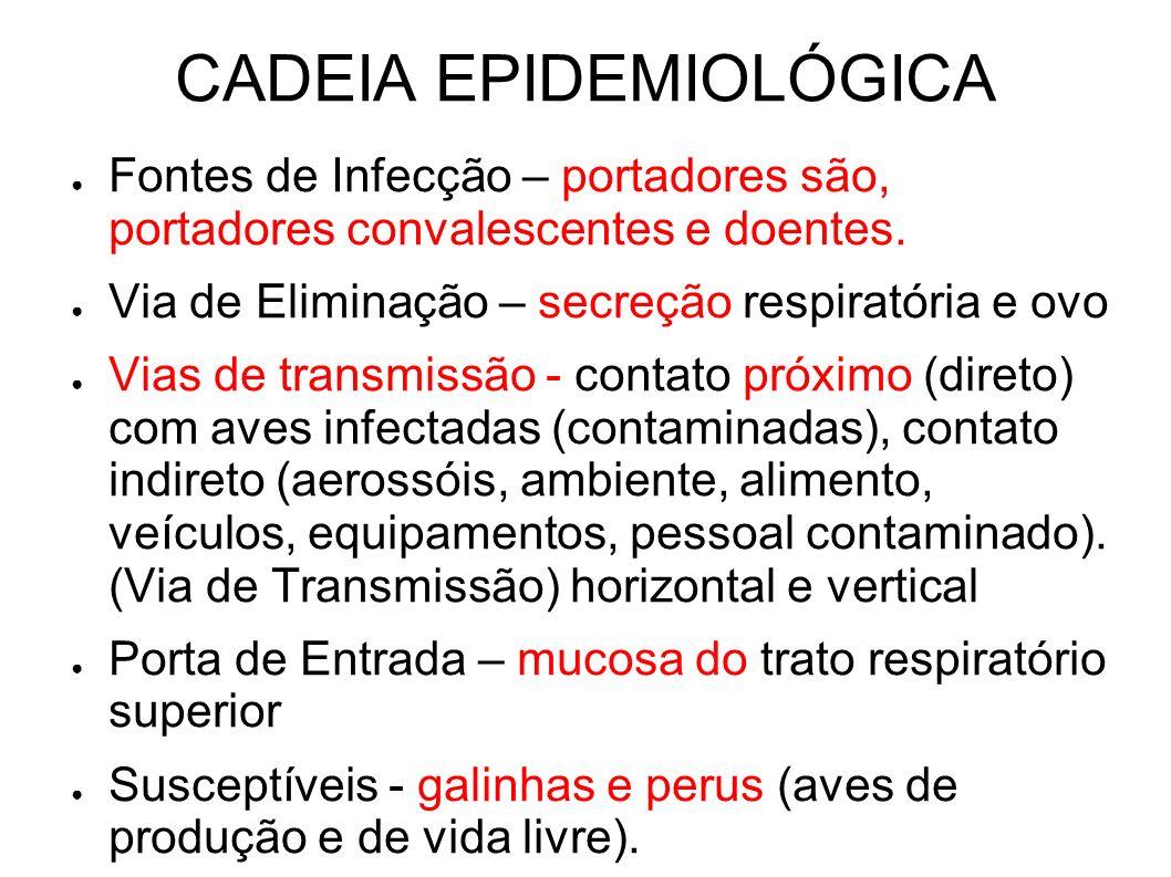 CADEIA EPIDEMIOLÓGICA Fontes de Infecção – portadores são, portadores convalescentes e doentes. Via de Eliminação – secreção respiratória e ovo Vias d