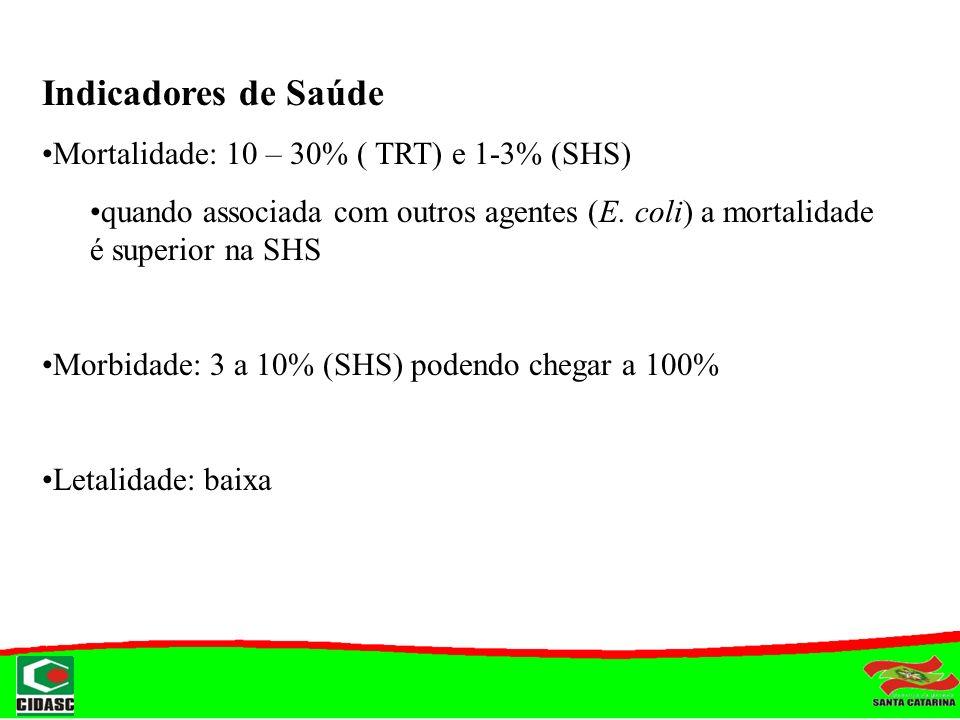 Indicadores de Saúde Mortalidade: 10 – 30% ( TRT) e 1-3% (SHS) quando associada com outros agentes (E. coli) a mortalidade é superior na SHS Morbidade